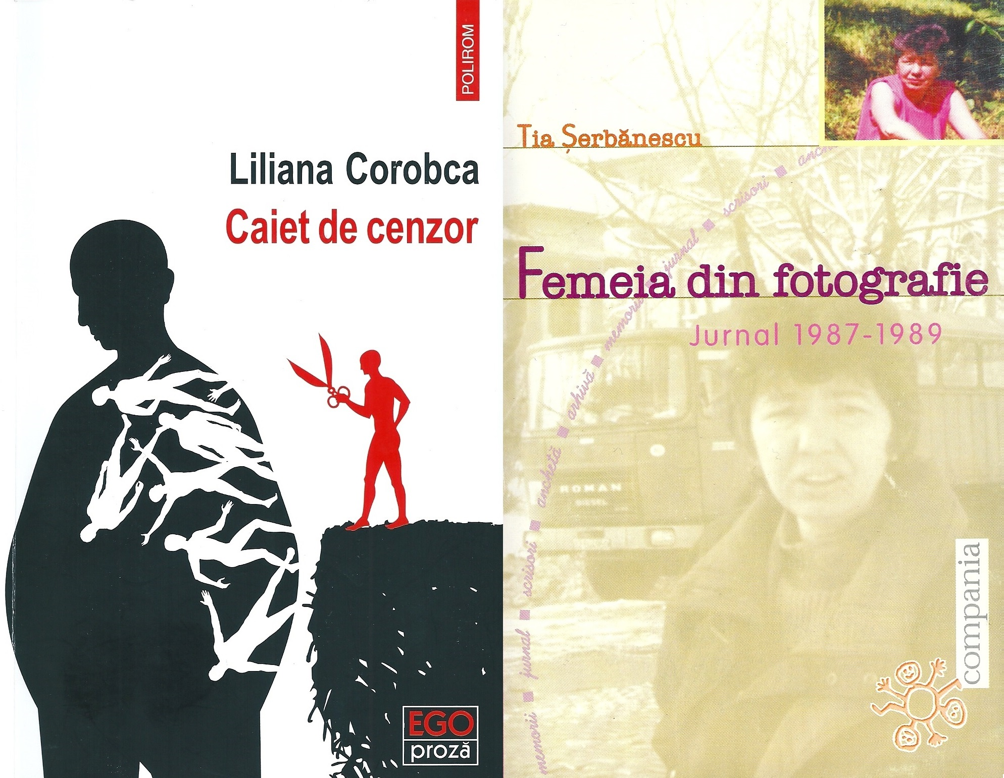 The covers of the two books explored in the article