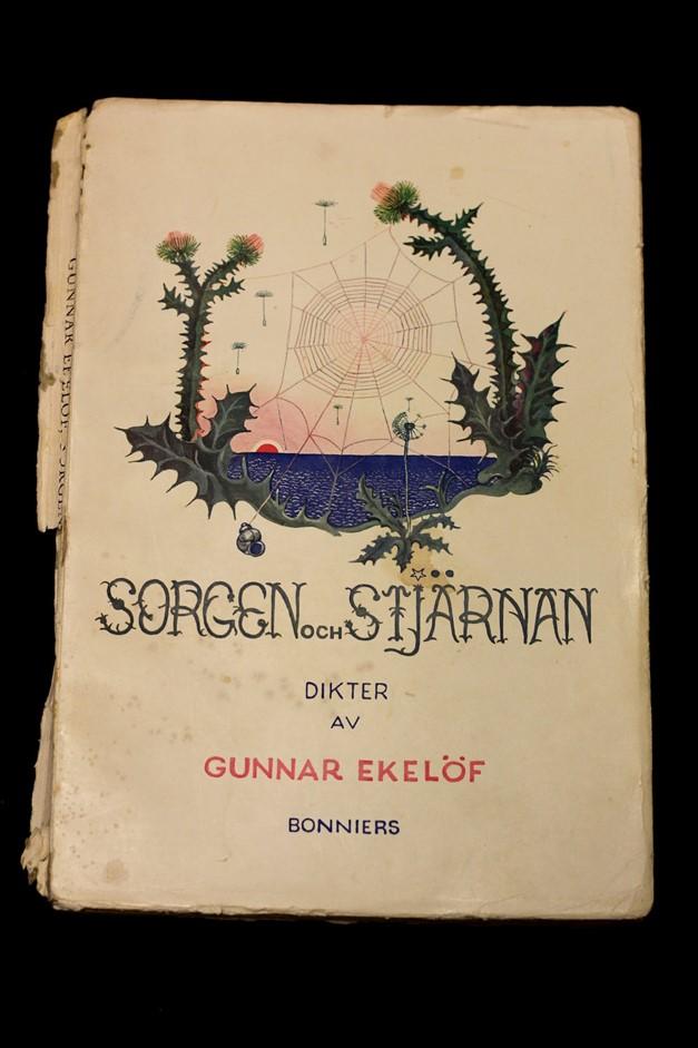 Bild på omslaget till Sorgen och stjärnan av Gunnar Ekelöf