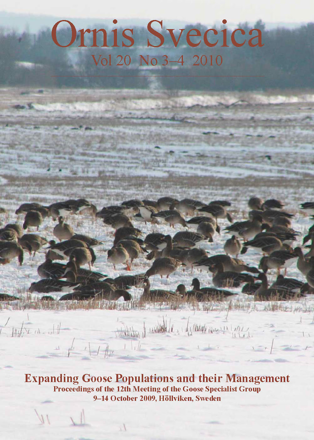 View Vol. 20 No. 3–4 (2010): Expanding Goose Populations and their Management: Proceedings of the 12th Meeting of the Goose Specialist Group, 9–14 October 2009, Höllviken, Sweden